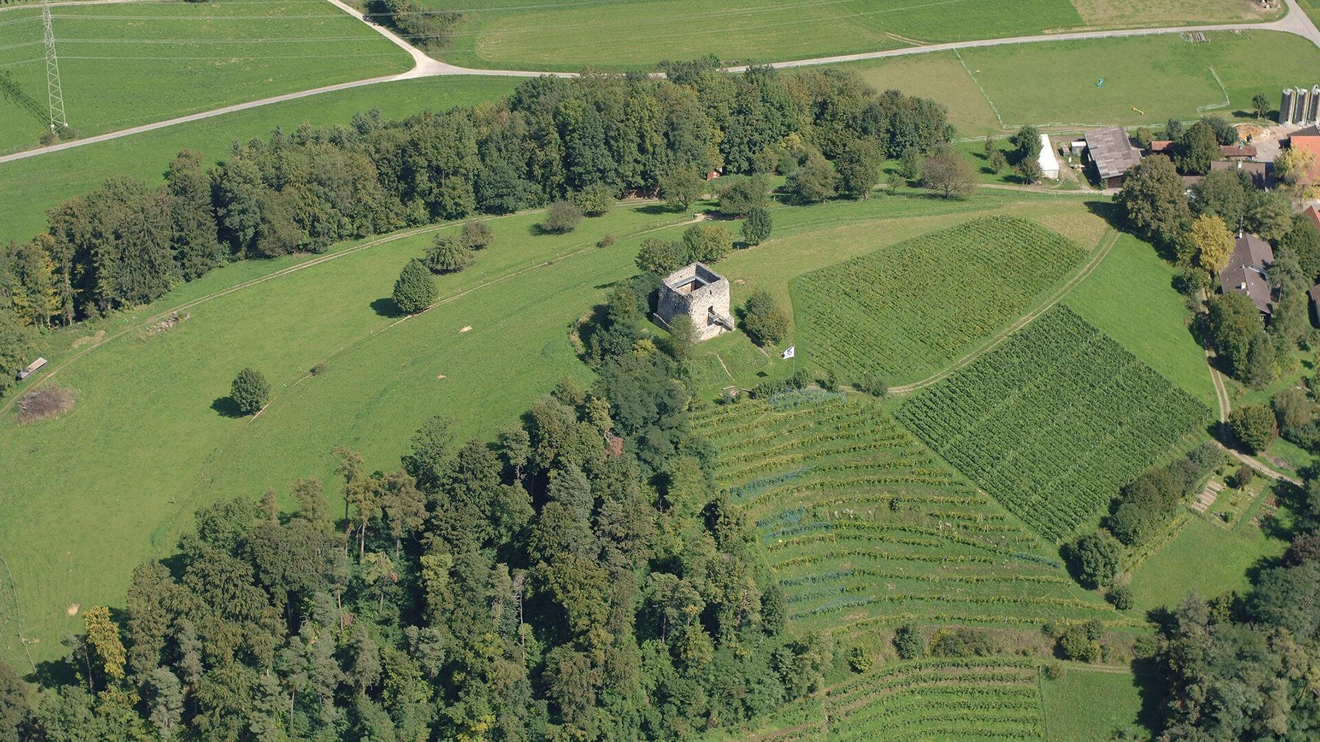 Luftaufnahme Burgruine Freienstein